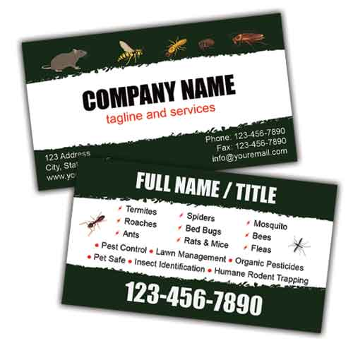 Pest Control Company Business Card
